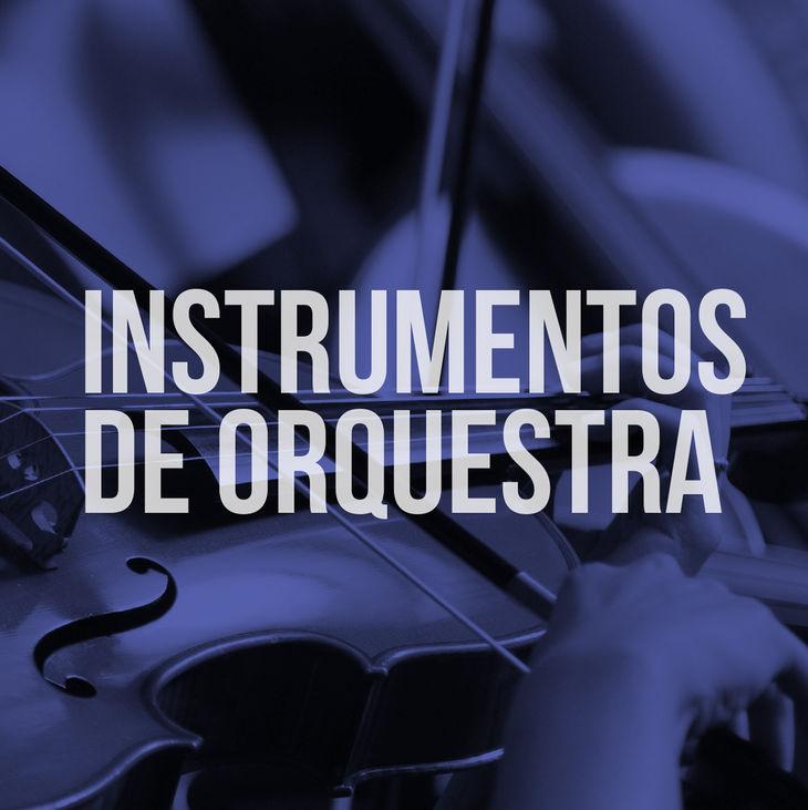 """Imagem de uma pessoa que toca violino. Centralizado, texto """"Instrumentos de Orquestra""""."""